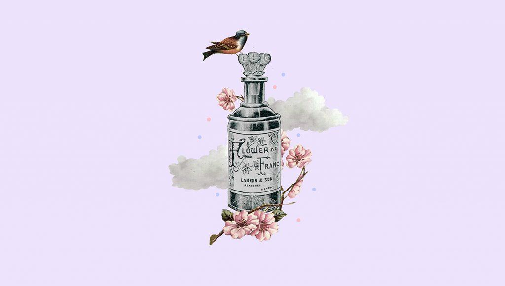 nolisoli beauty how to keep perfume summer