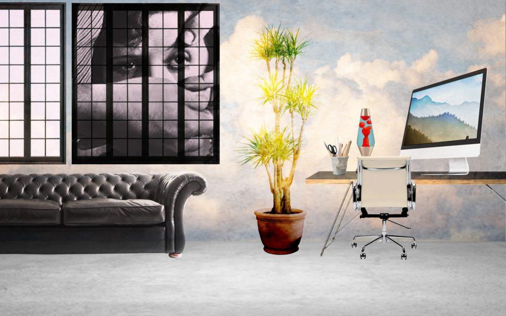 noli feature space creative work space