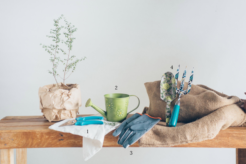 make market 1115 noli herb garden