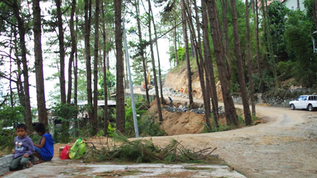 philippine-forest