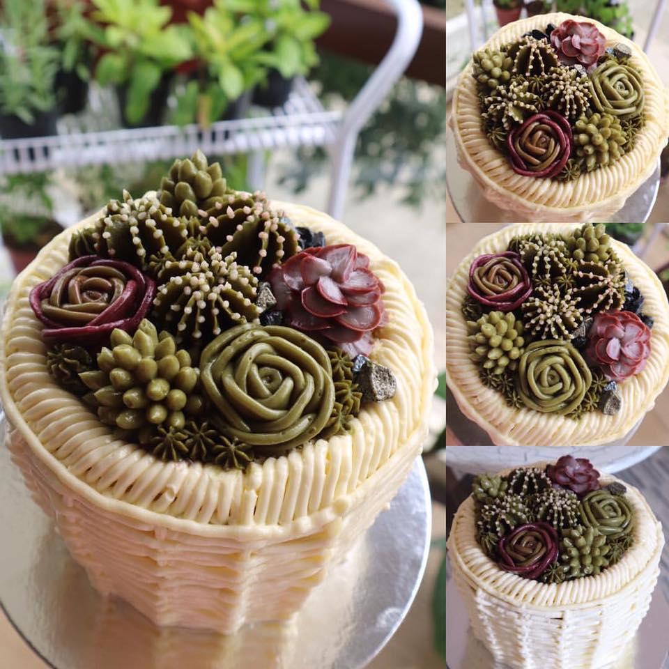 succulents cakes trend nolisoli.ph