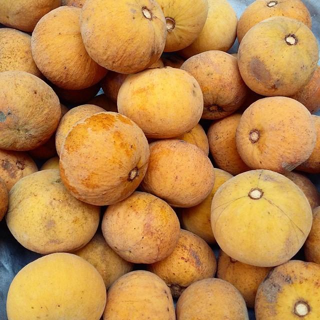 nolisoli santol eats food trends cottonfruit