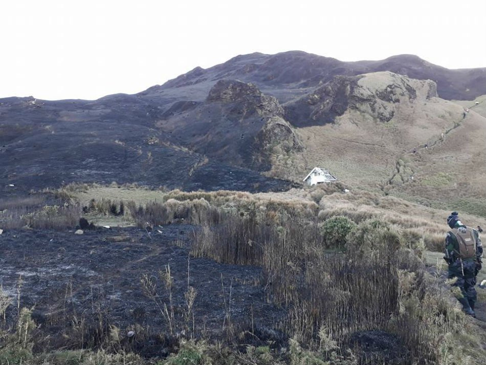 nolisoli fire forest pulag mountain wildfires