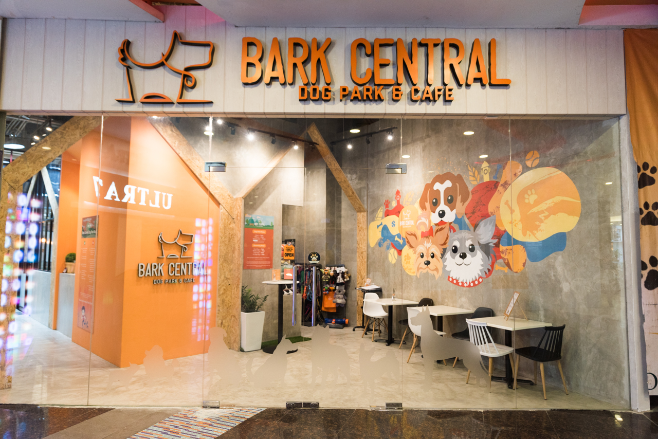 Image result for Bark Central Dog Park & Cafe