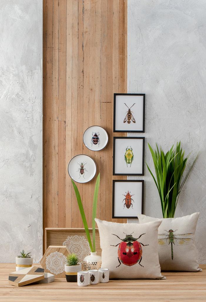 nolisoli ito kish curated home collection