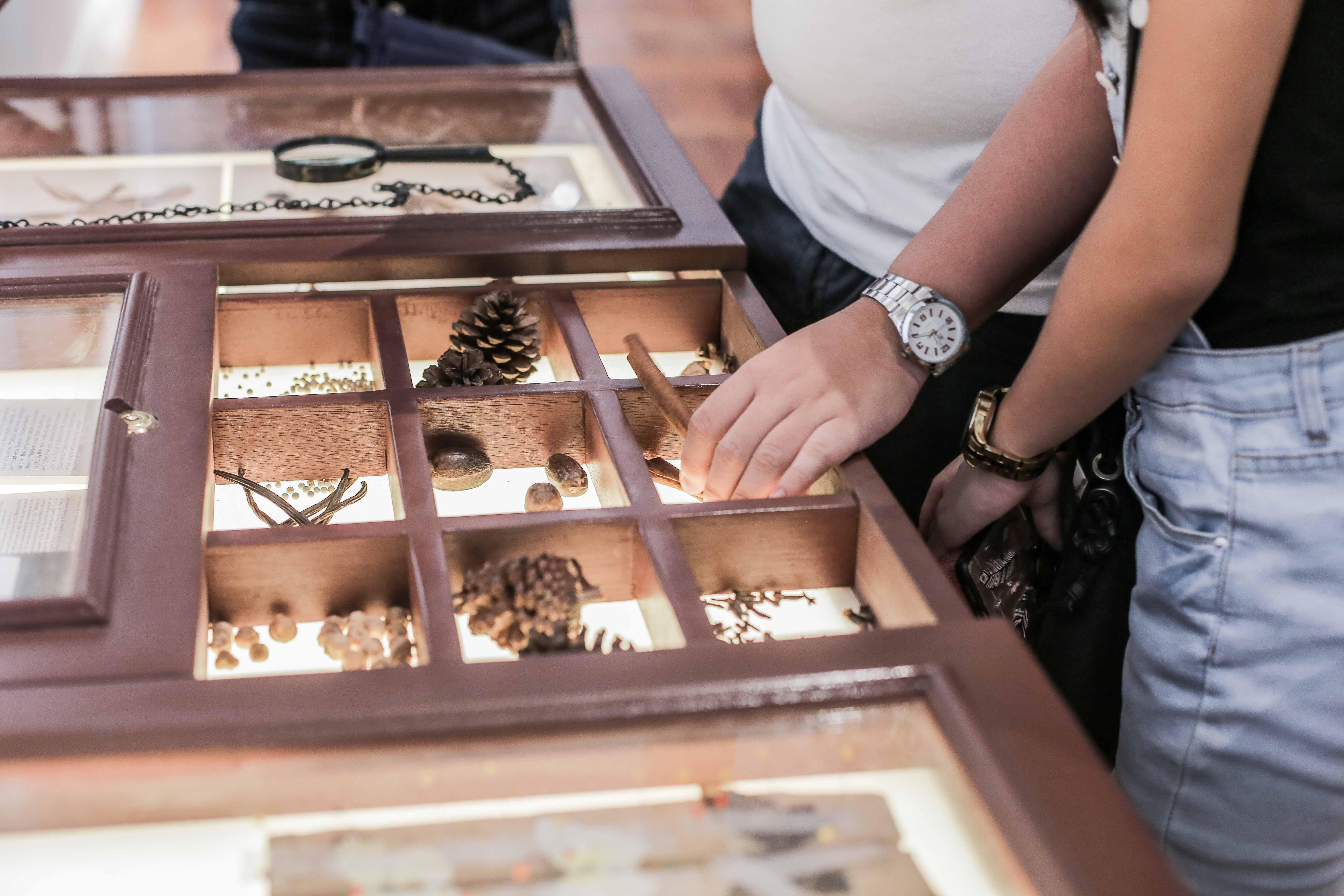 nolisoli arts city guide national museum natural history manila