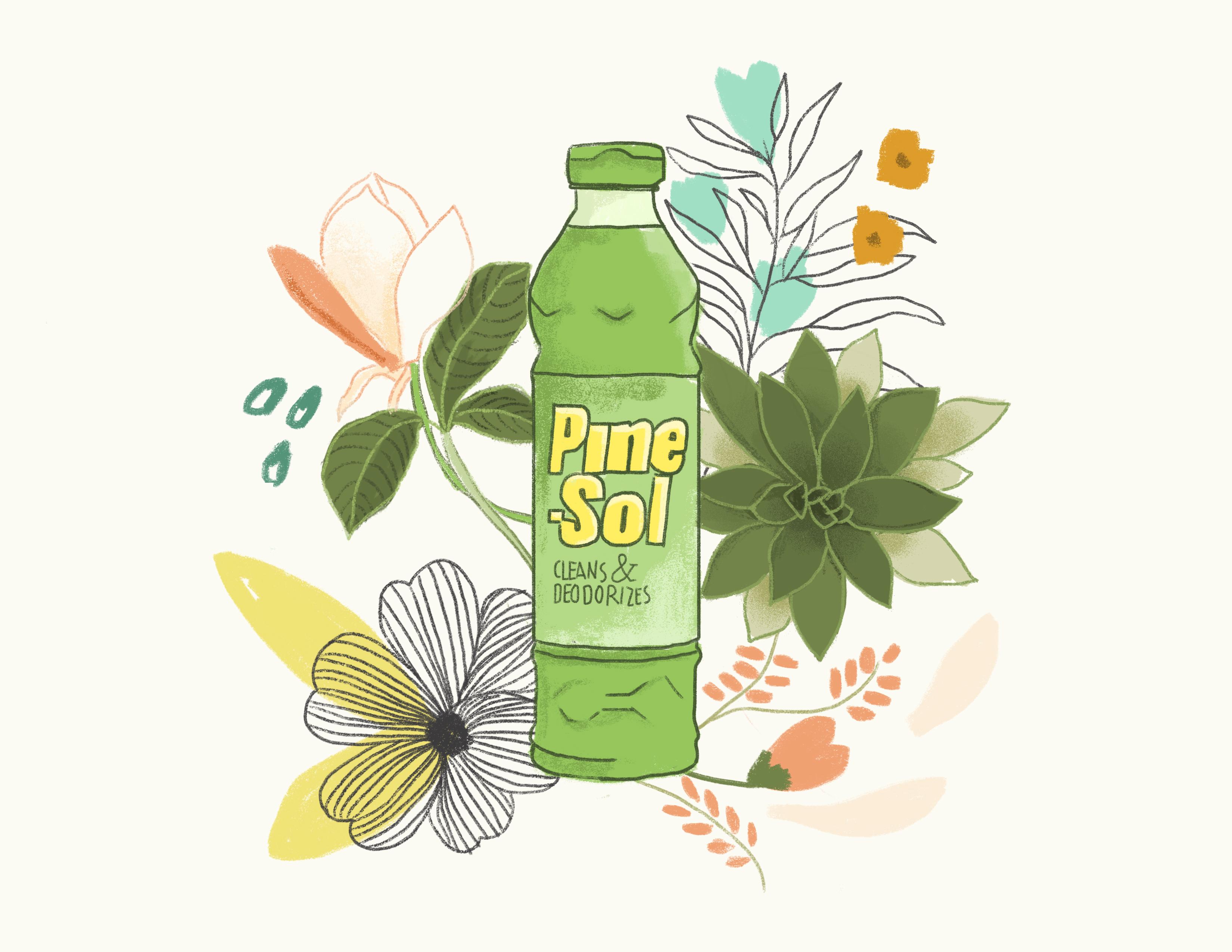 nolisoli sponsored pine-sol