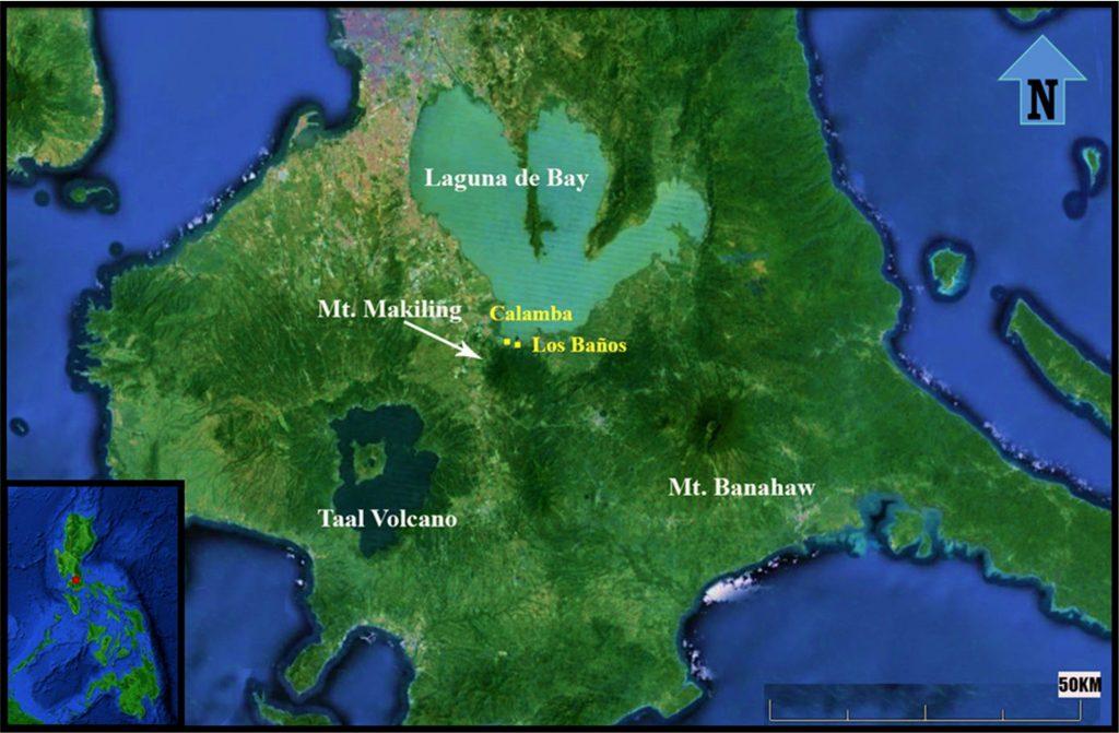 nolisoli fixture laguna hot springs