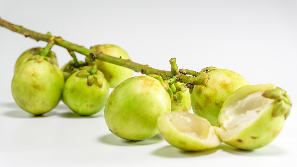 In Season Fruits From July To September Nolisoli