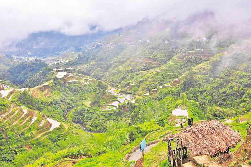 nolisoliph banaue rice terraces
