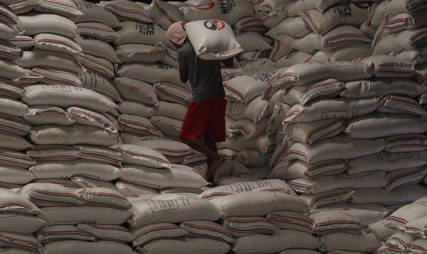nolisoli imported rice weevils