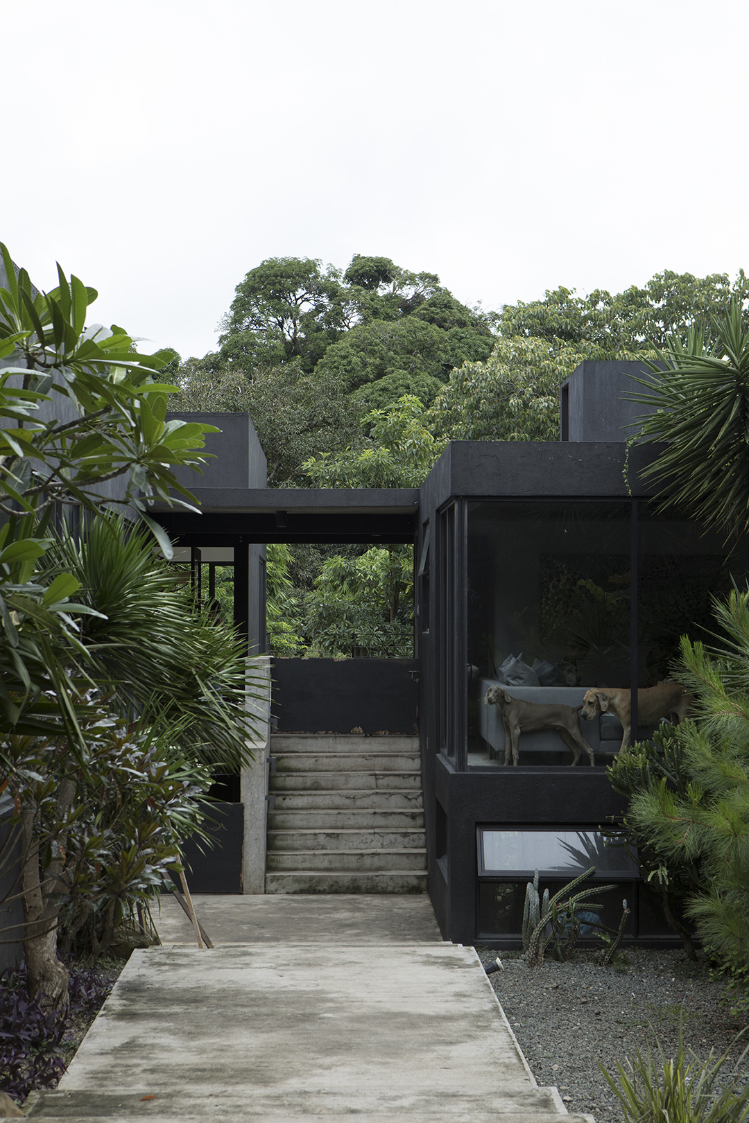Jinggoy Buensuceso home