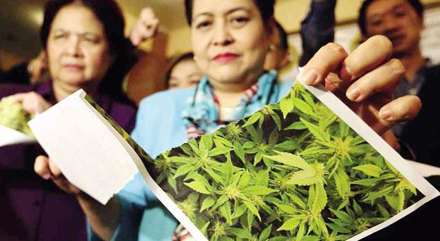 cannabis raffy lerma inq
