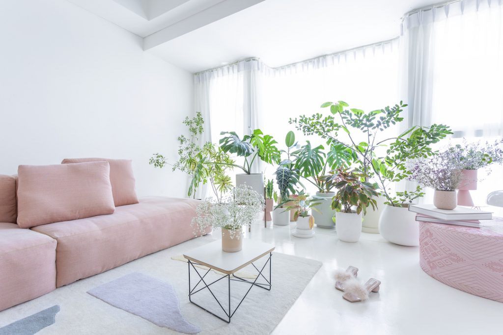 martine ho apartment
