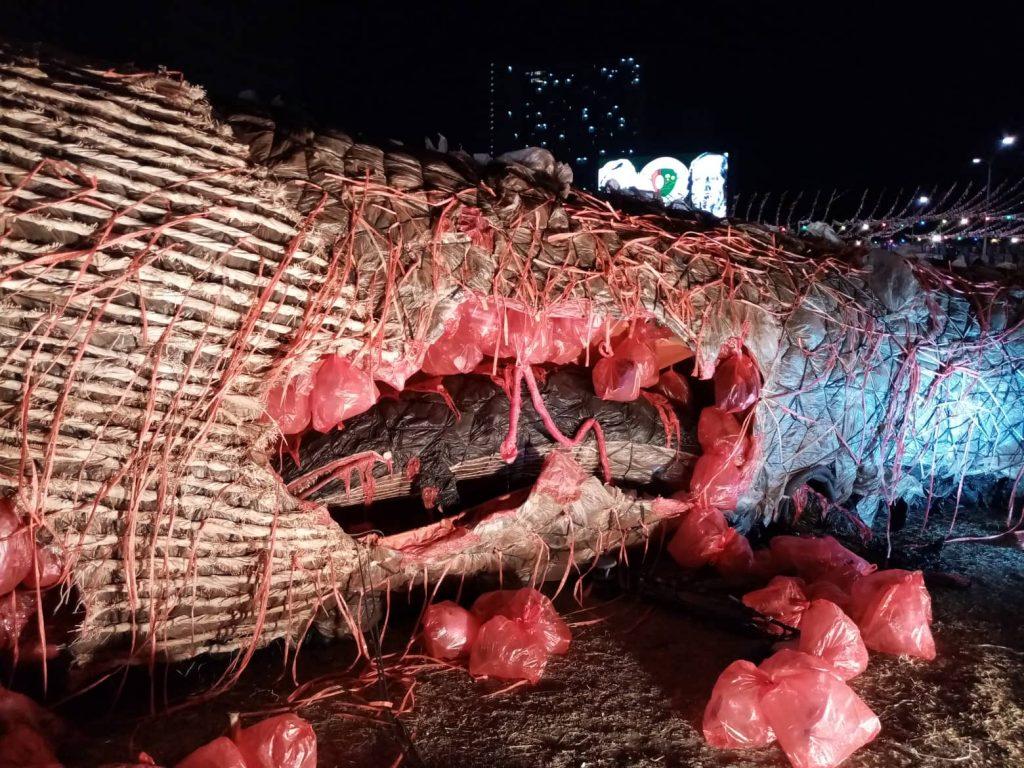 nolisoli dead whale ccp